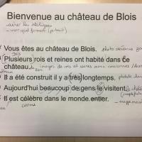 Falc Blois page 1